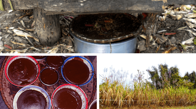 Products extracted from sugarcane